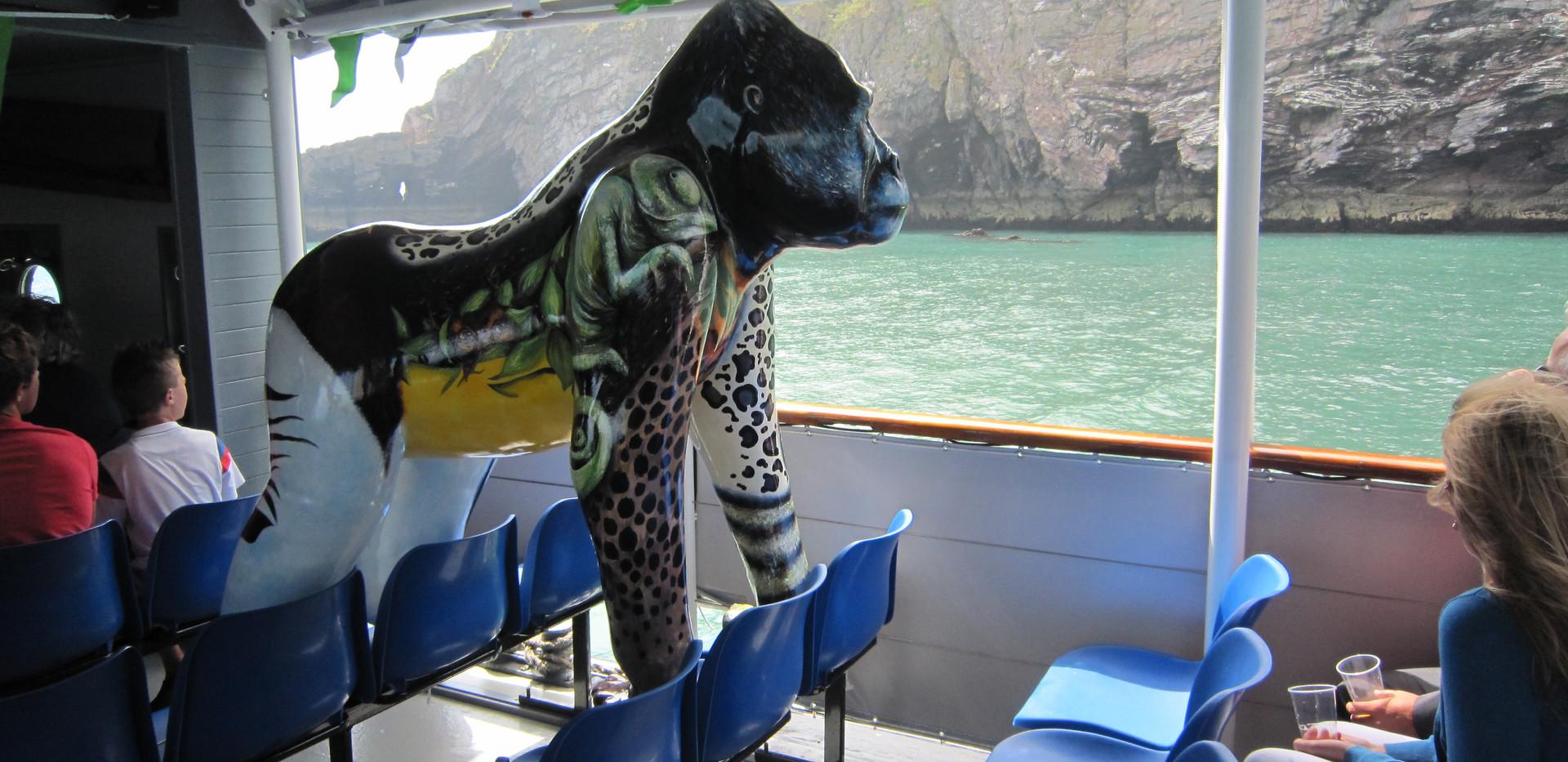 Great Gorillas Flotilla camera 294.jpg