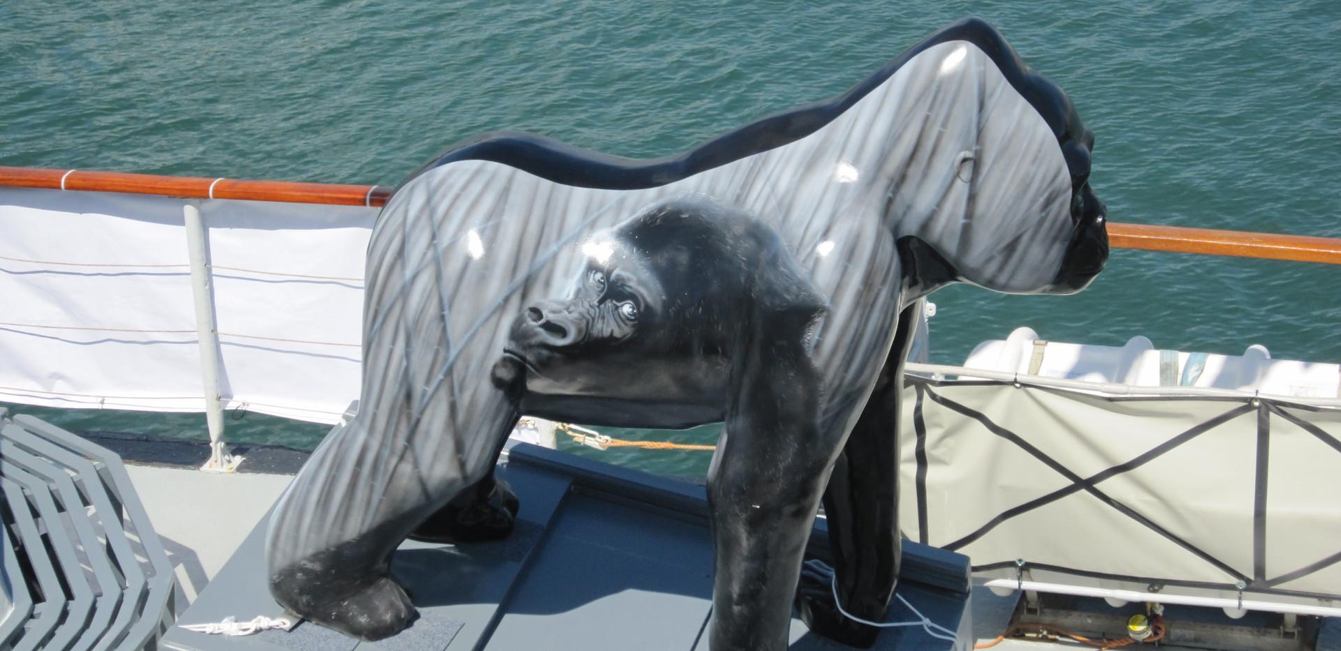 Great Gorillas Flotilla camera 335.jpg