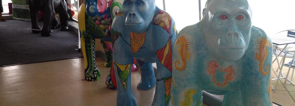 Great Gorilla Flotilla iphone 024.jpg
