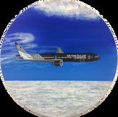 Air NZ Rugby Plane