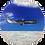 Thumbnail: Air NZ Plane 777 ER