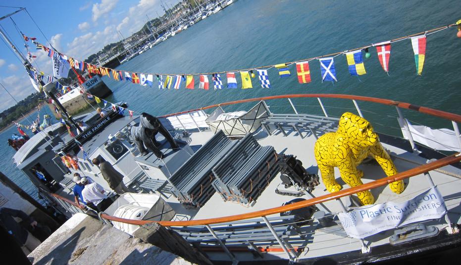 Great Gorillas Flotilla camera 323.jpg