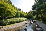trauttmansdorff_garten_botan_japanese