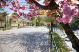 spring_winterpromenade_promenade_blue