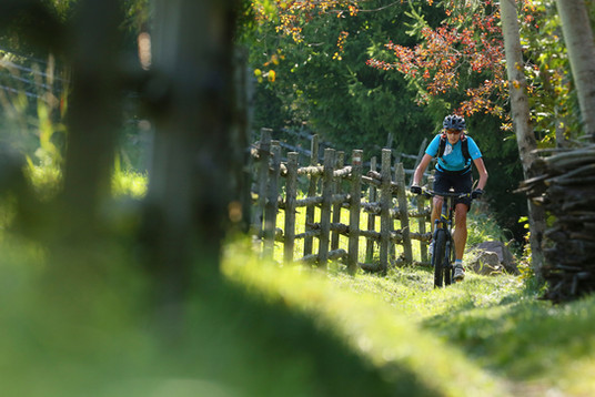 mountainbike_touren_bike_radfahren_holzz