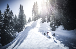 meran_2000_winter_hiking_winterlandscha