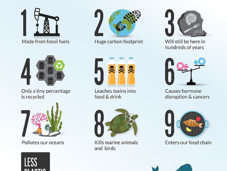 The many benefits of shopping plastic free
