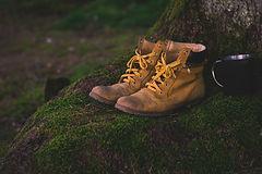 shoes-1638873_1920.jpg