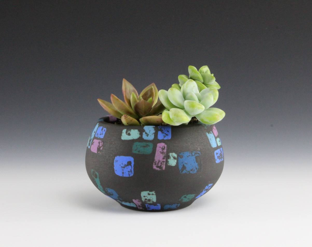Succulant bowl #2