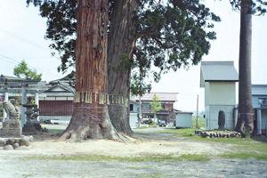 02.6.20昭和・熊野神社2.jpg