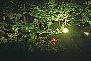 02.8.15真浄院庭園.jpg