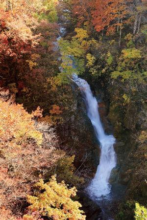 02.11.21まるごと_大赤沢蛇渕の滝.jpg