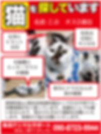 01.12アニマルサポート_web広告.png