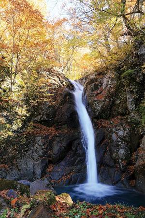 02.11.21まるごと_小赤沢大瀬の滝.jpg