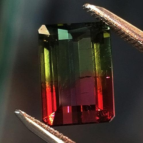 Bi-Color Tourmaline
