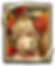 Grand_quest_010_thum.png