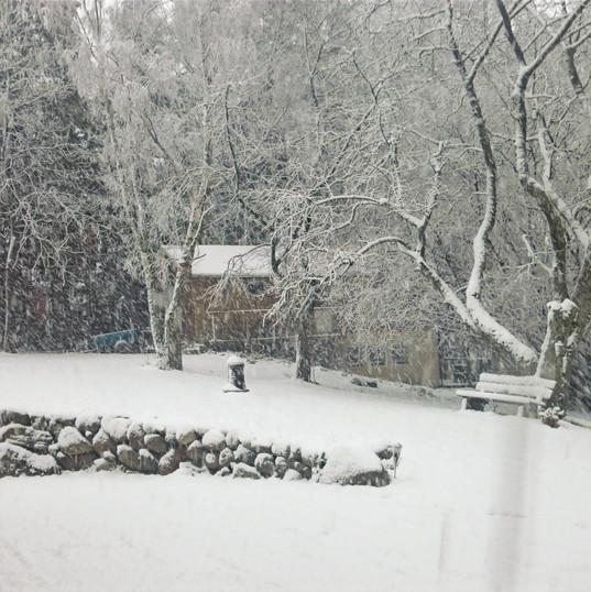 Konferenshuset i snöskrud