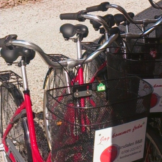 Visst måste det vara röda cyklar här!