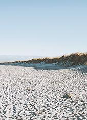 Shoreline_edited.jpg