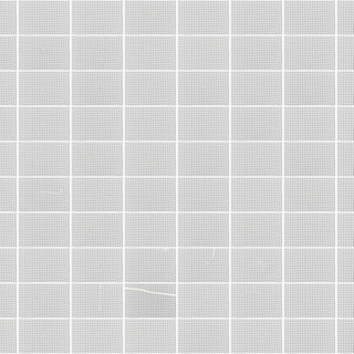 websizewhite grid b0 low quality.jpg