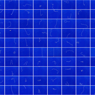 websizeblue grid b0 low quality.jpg