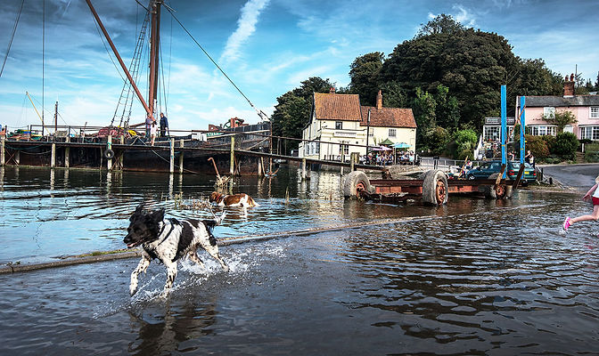 Running Dogs at Pin Mill lores.jpg