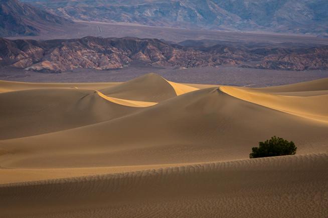 Sunrise off the sand dunes