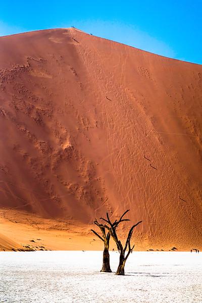 The immense sand dunes at Deadvlei