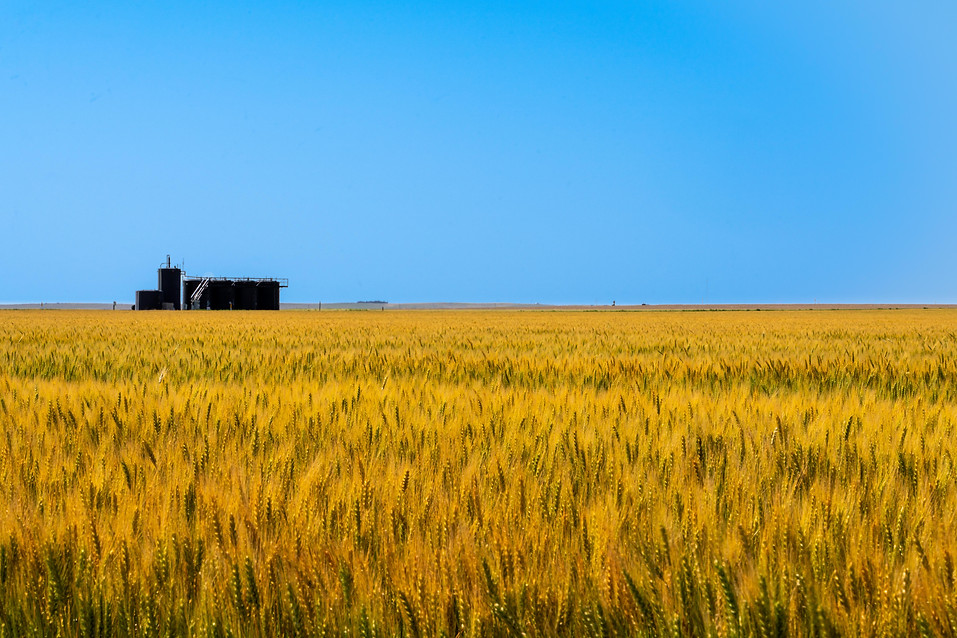 Oil and wheat in the heat