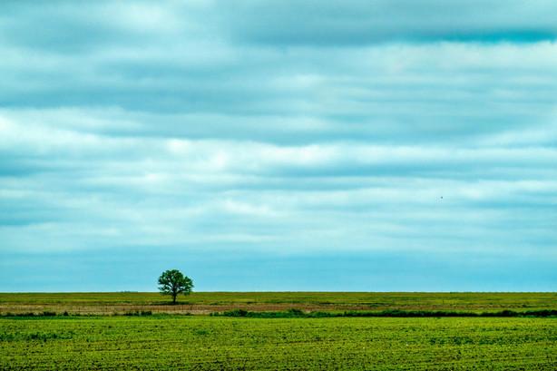 Quiet plains between storms