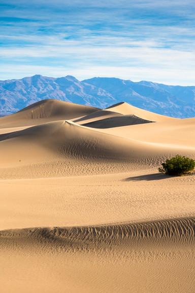 Dunes and range