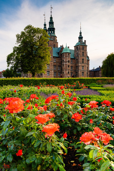 Rosenborg Castle rose garden