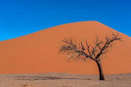 Dune 45 - spectacular colors