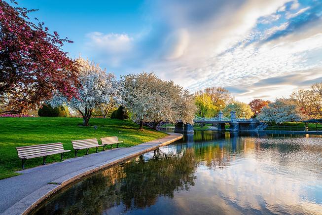 Sunrise, Boston Public Garden