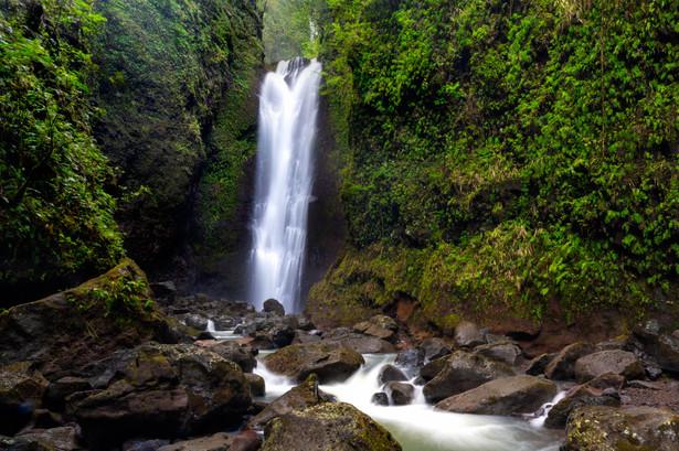 Hidden falls, Maui