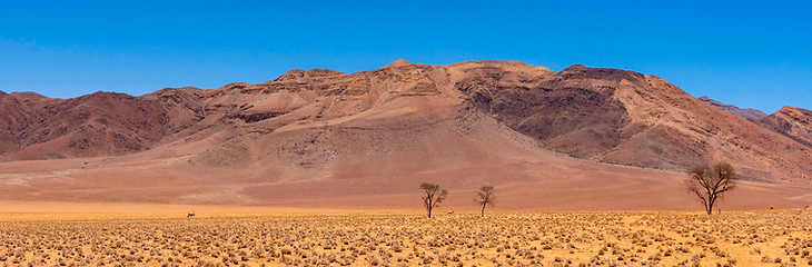 NamibRand Nature Reserve landscape