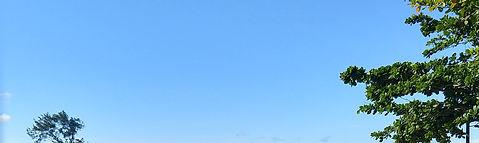 Trapiches da Baía da Babitonga