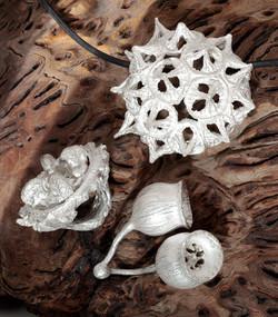 Gruppe Eukaliptus 925_000 AG (2).jpg
