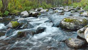 Going Upstream
