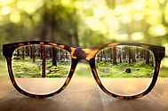 vision-through-glasses-.jpg