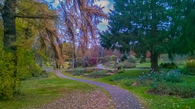 Kurpark Herbst 7.jpg