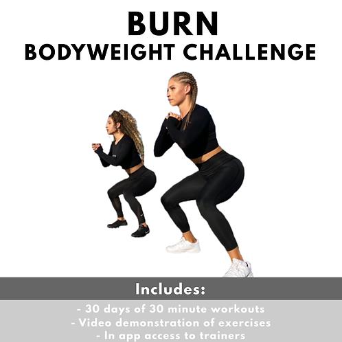 Burn - 30 Day Bodyweight Challenge