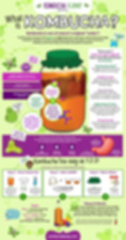 Kombucha Infographic.jpg