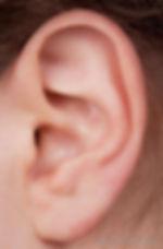 close-view-of-white-human-ear.jpg