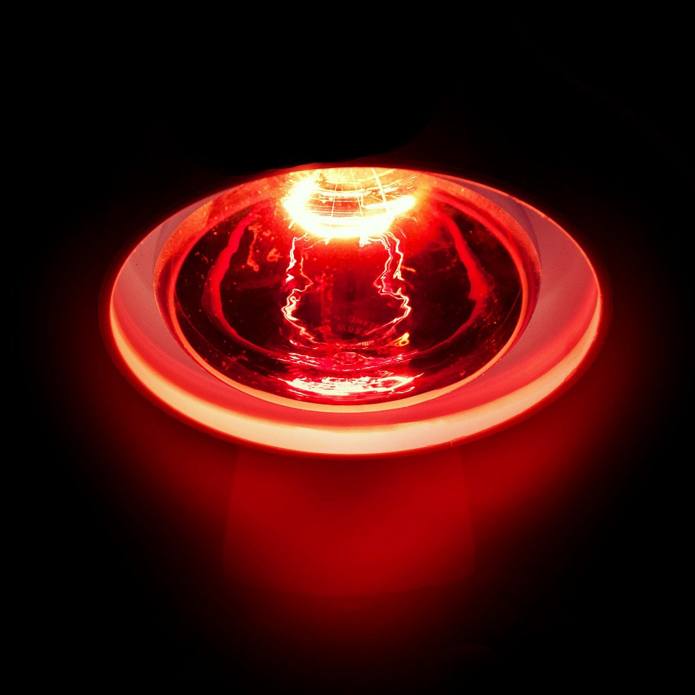 Infrared (Heat) Lamp Therapy 遠紅外線治療