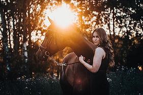 Happy Valentine's Day 💛✨ #horsephotogra