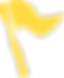 flag icon (yellow).png