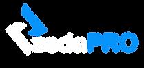 logo h dark.png