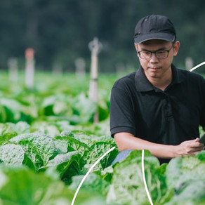 Ask Me Anything: Action-led Research for Smallholder Farming in Southeast Asia