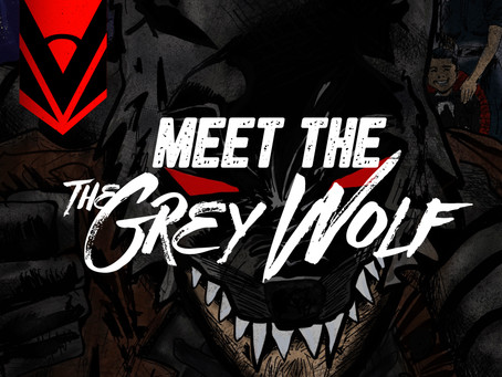 Meet the Grey Wolf
